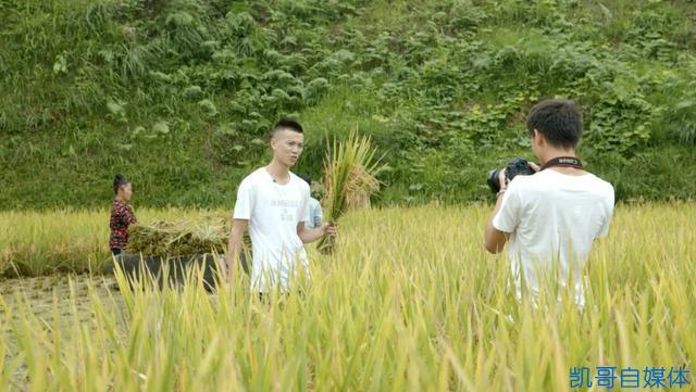 像欢子TV一样回农村拍短视频,辞职做今日头条号行吗?自媒体还能不能赚钱?